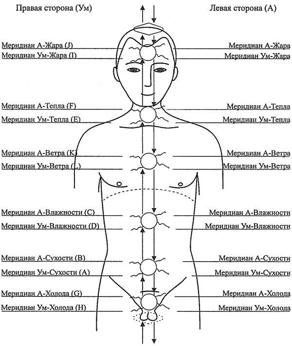 современное лечение паразитов в москве